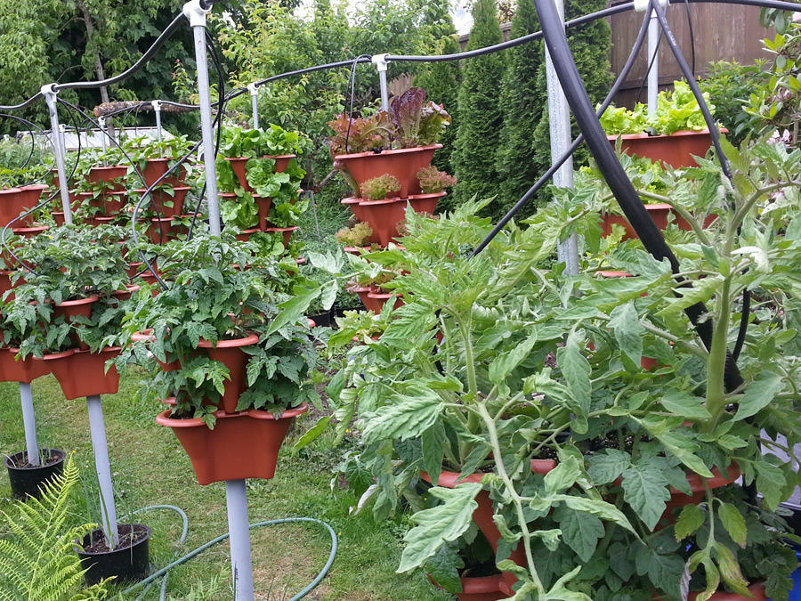 Vertical Garden Side View