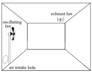 oscillating fan for air circulation