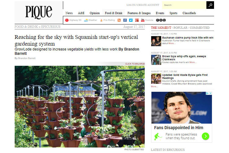 Pique magazine Article For Vertical Garden